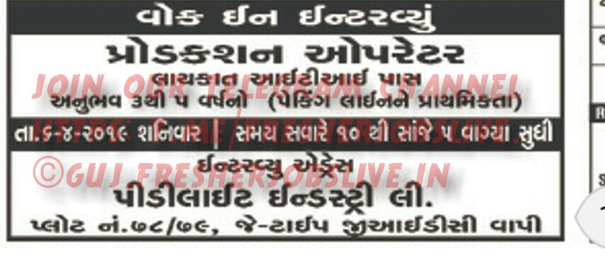 Gujarat Jobs Live