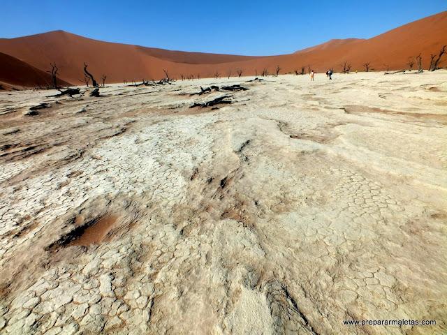 suelo seco namibia