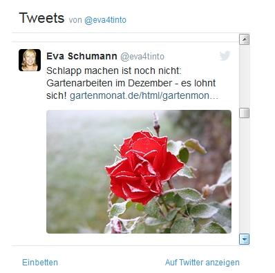 Twitter-Tweets auf einer Webseite einbinden