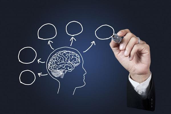 3 Tips de NeuroVentas que te ayudarán a ser un vendedor más efectivo