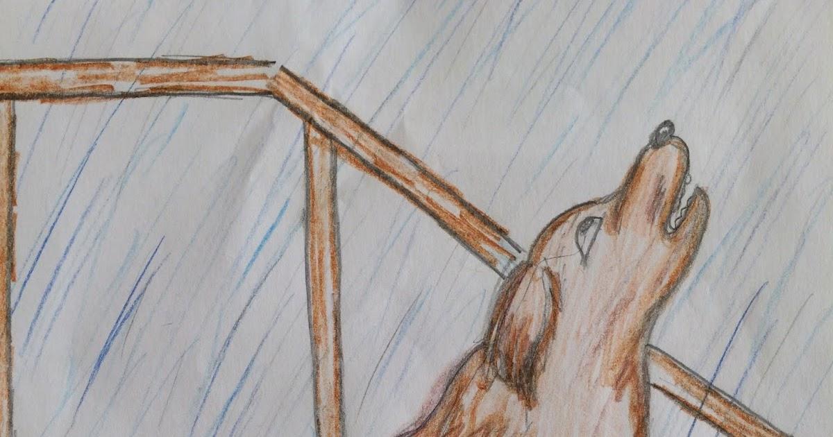 Рисунки к рассказу кусака андреева