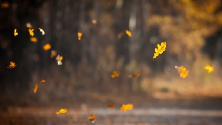 Doa Ketika Angin Ribut/ Angin Bertiup Kencang