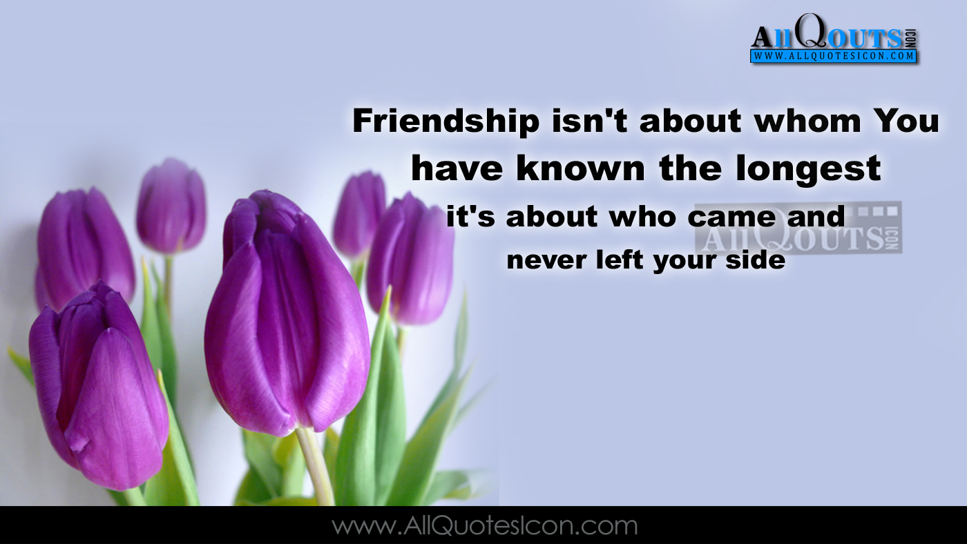 Best Quotes For Friend In English : Best friendship quotes in english hd wallpapers