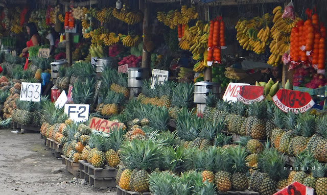Freshest and Affordable Fruits at Tupi Fruit Park