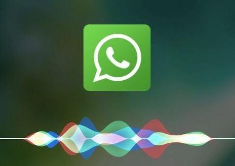 Bagaimana Cara Membuat Status Lagu di WhatsApp?
