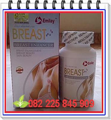 http://www.tokochiliong.com/2016/11/jual-obat-pembesar-payudara-herbal-emilay-breast.html