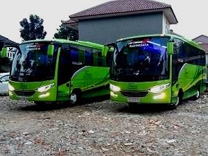 Rental Medium Bus Di Bekasi, Rental Bus Medium Bekasi