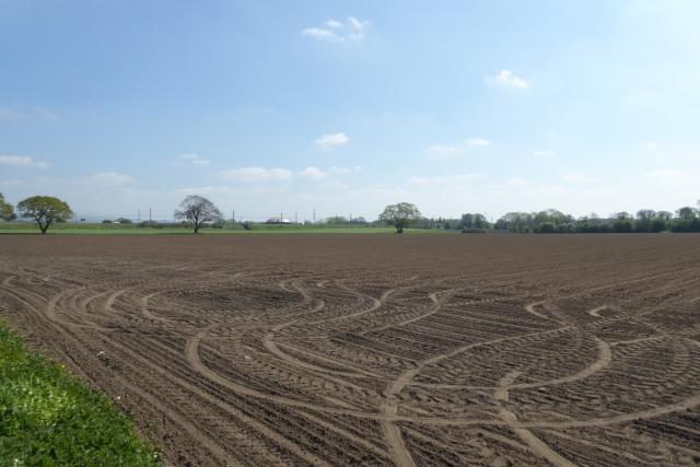 التربة في حياتنا