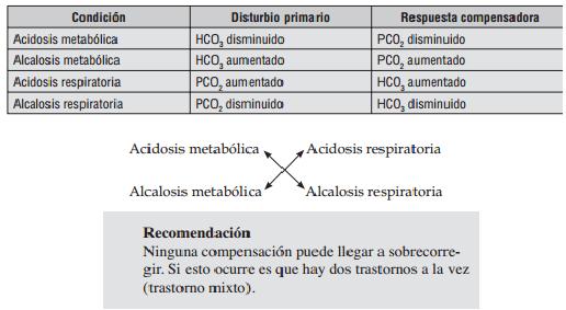 Suplementos vitamínicos para la circulación