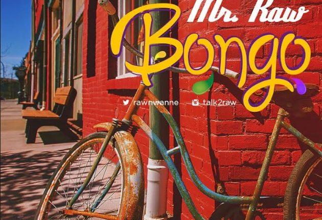 Mr Raw Bongo