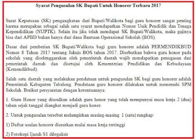 Syarat Pengusulan SK Bupati Untuk Honorer Terbaru 2017