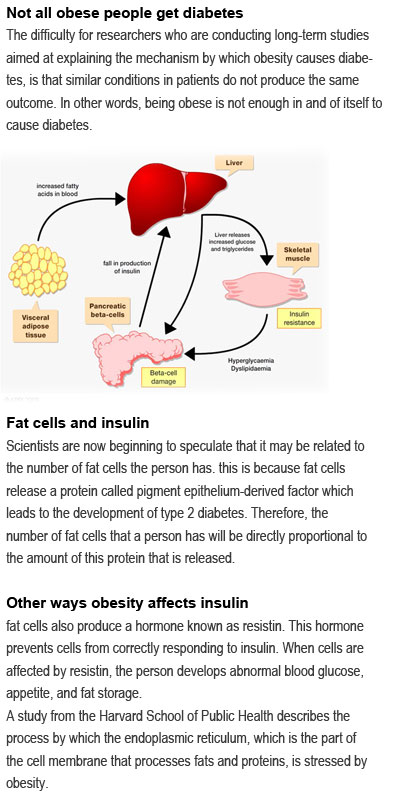 Diabetes References, Does Obesity Cause Diabetes Type 2