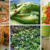 20 Secret Alkaline Diet Recipes to Boost Energy And Lose Weight