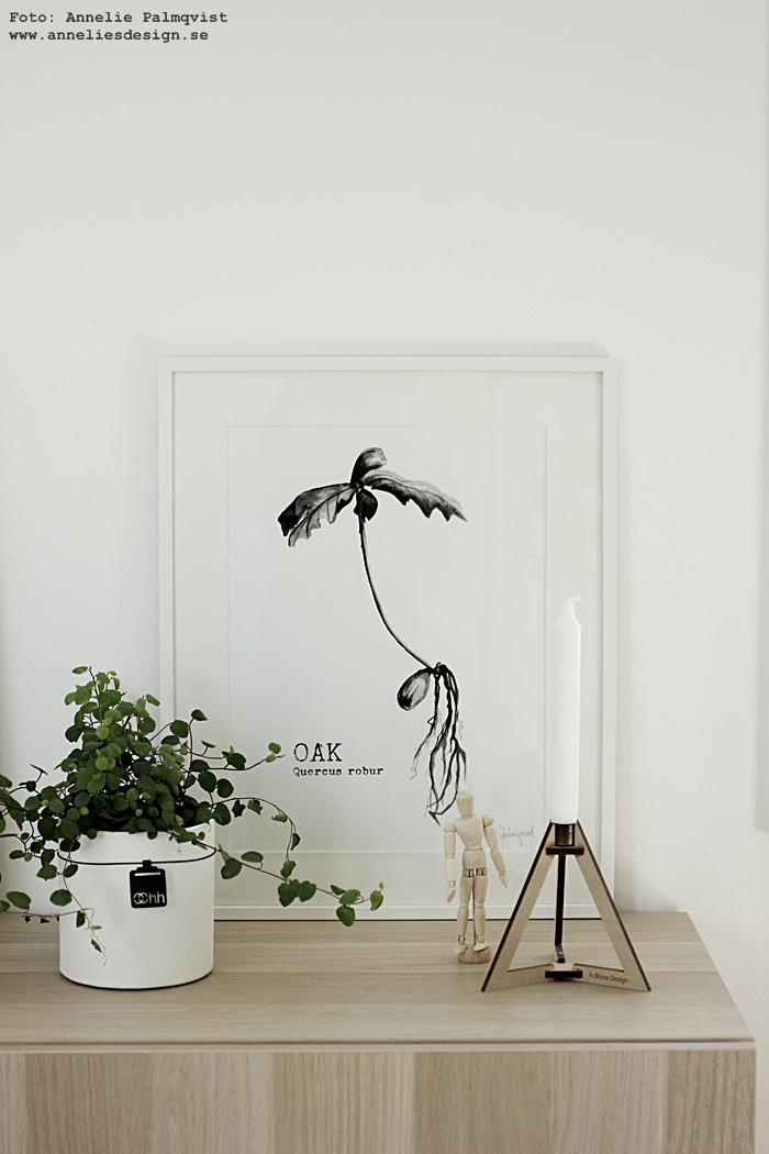 konsttryck, oak, ekollon, tavla, tavlor, poster, posters, print, prints, annelies design, webbutik, webbutiker, webshop, inredning, plakat, plakater, nettbutikk, nettbutikker, liten modelldocka, mannequin, svartvit inredning, svart och vitt, svartvita, vitt, vit, ram, ikea bestå, ikeas, skänk, trären, natur, oohh kruka, krukor, ljusstake böset, ljusstakar,