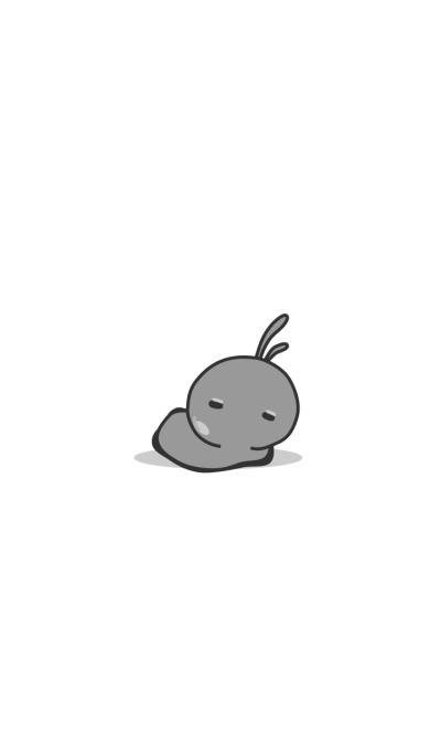 rabbit staring-83