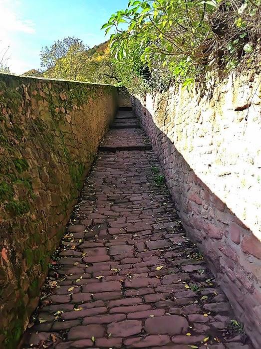 Aufstieg zum Philosphenweg in Heidelberg