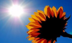 Μίνι καλοκαίρι από την ερχόμενη εβδομάδα – Ο υδράργυρος θα ξεπεράσει τους 30 βαθμούς Κελσίου