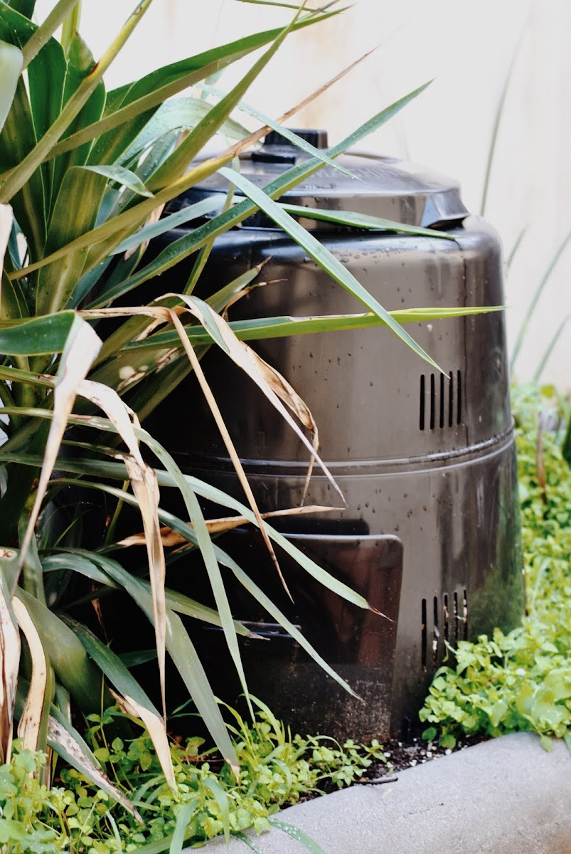 composting - off the grid in the city