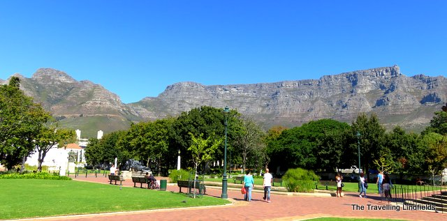 Gardens in central Cape Town