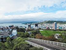 Felt Home In Wellington Zealand Charlie