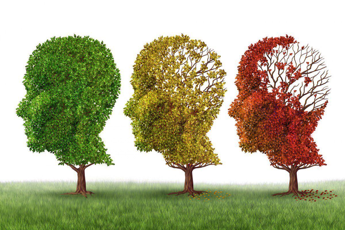Oggi è la Giornata mondiale dell'Alzheimer | Salute News