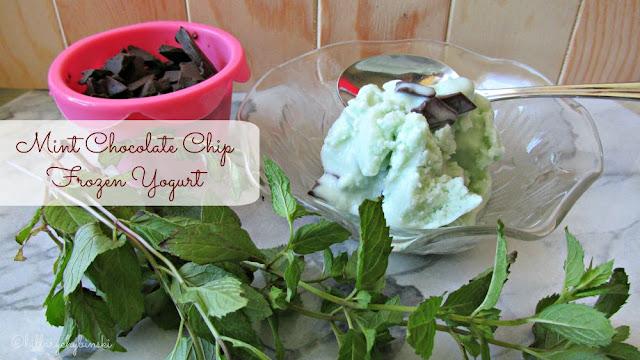 Easy Recipe for Making Mint Chocolate Chip Frozen Yogurt