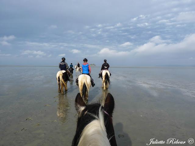 Baie du Mont-Saint-Michel à cheval