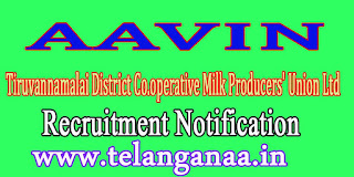 AAVIN (Tiruvannamalai District Co.operative Milk Producers' Union Ltd) Recruitment Notification