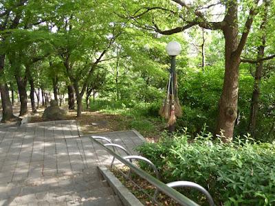 鶴見新山 南側の階段