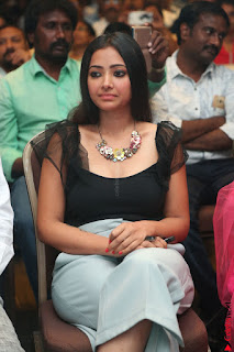 Swetha Basu in a Black Sleeveless Top Long Skirt at Mixture Potlam Movie Audio Launch 008.JPG