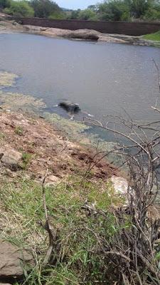 Brumado: Corpo é encontrado boiando em barragem do povoado de Correias