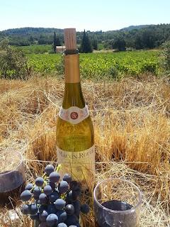 Ruta del Vino - Francia