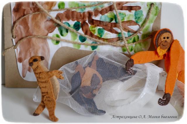 palchikovyj-teatr-surikat-orangutan-sachok-letuchaja-myshka