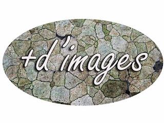 https://stonejinns.blogspot.fr/search?updated-max=2018-03-12T06:30:00-07:00&max-results=13