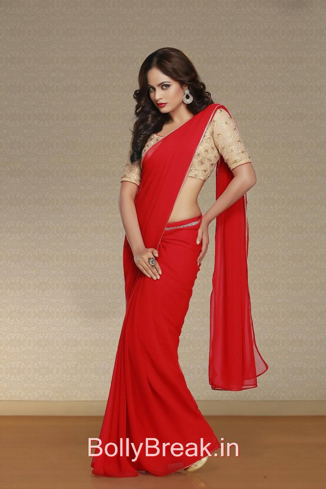 Nandita Photos, Actress Nandita Swetha in Saree - Hot HD 2015 Pics