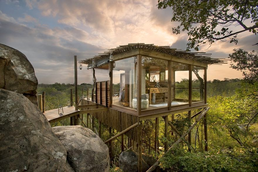 Kingston Treehouse, Lion Sands, Sudáfrica