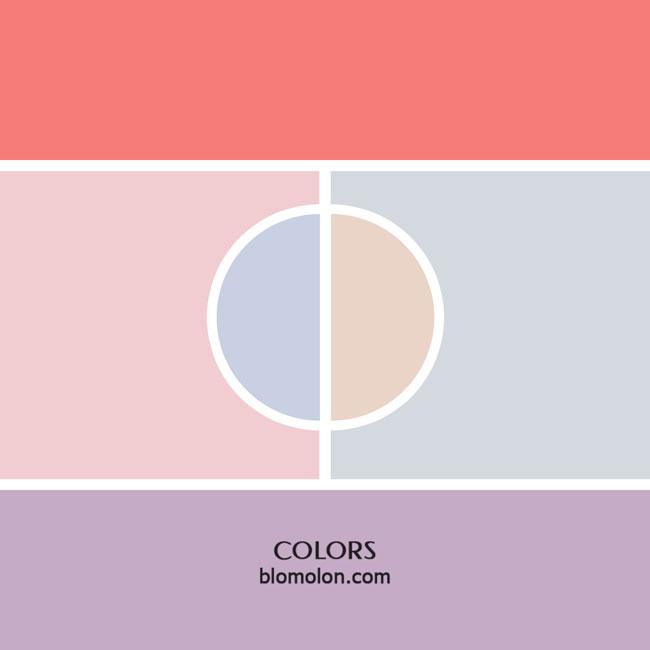 variedad_en_color_color_5