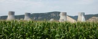 Erneuerbare Energien übertreffen Atomkraft
