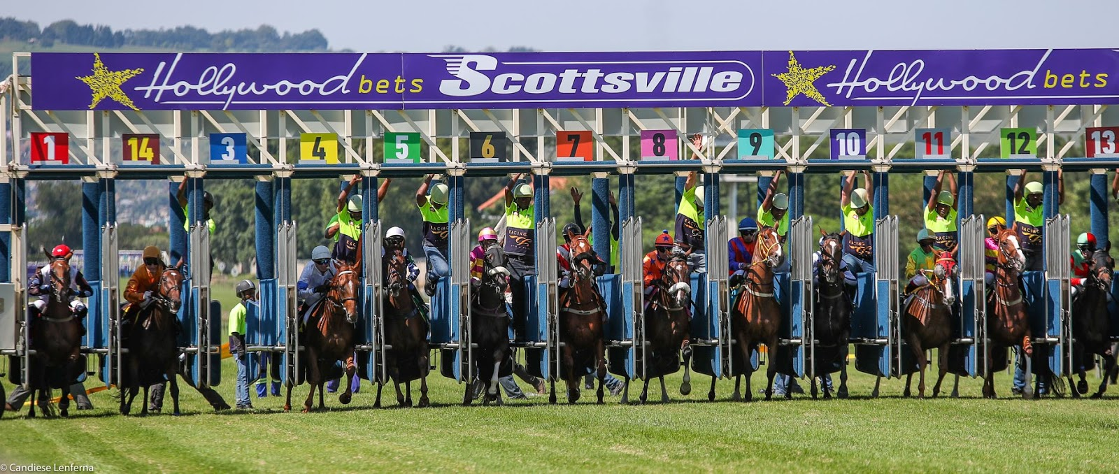 Hollywoodbets Scottsville Racecourse - starting gates