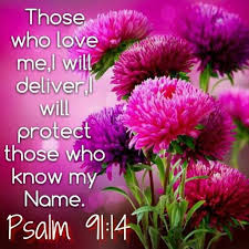 Psalm 91:14 - Because he has set his love upon me, therefore will I deliver him: I will set him on high, because he has known my name.