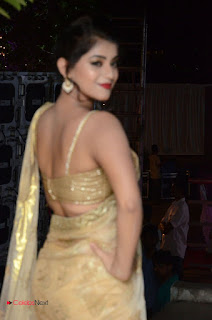 Actress Yamini Bhasker Pictures in Saree at anic Movie Audio Launch  0065.JPG