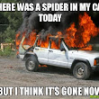 An open letter to the spiders in my car