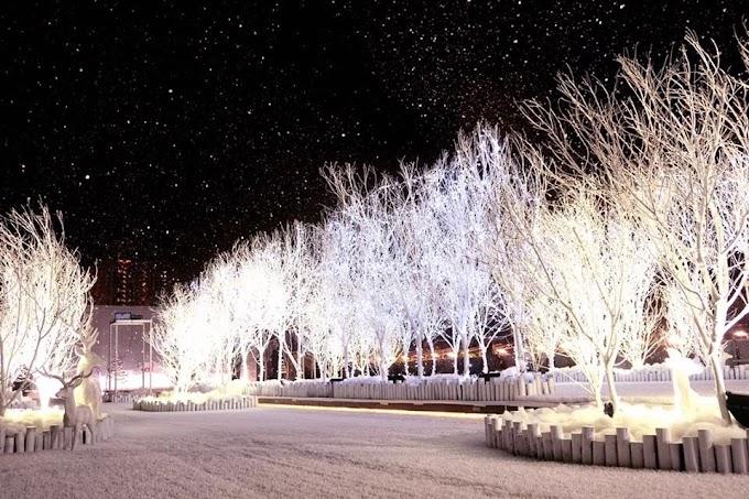 【白色聖誕】體驗北歐冬日氣氛 D2 Place 極光冰雪森林
