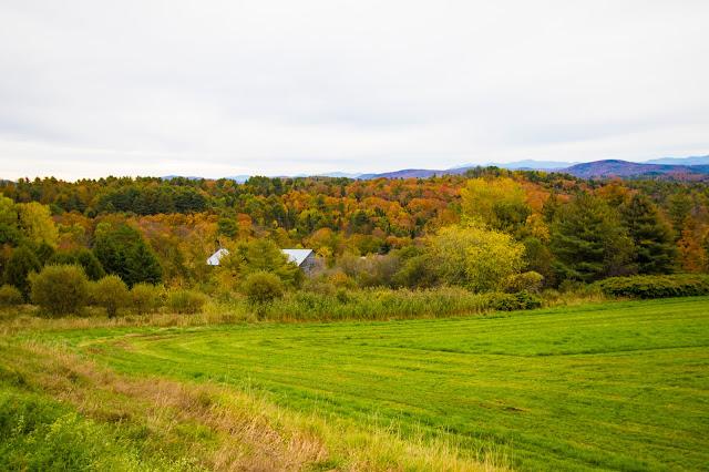 Foliage-New England