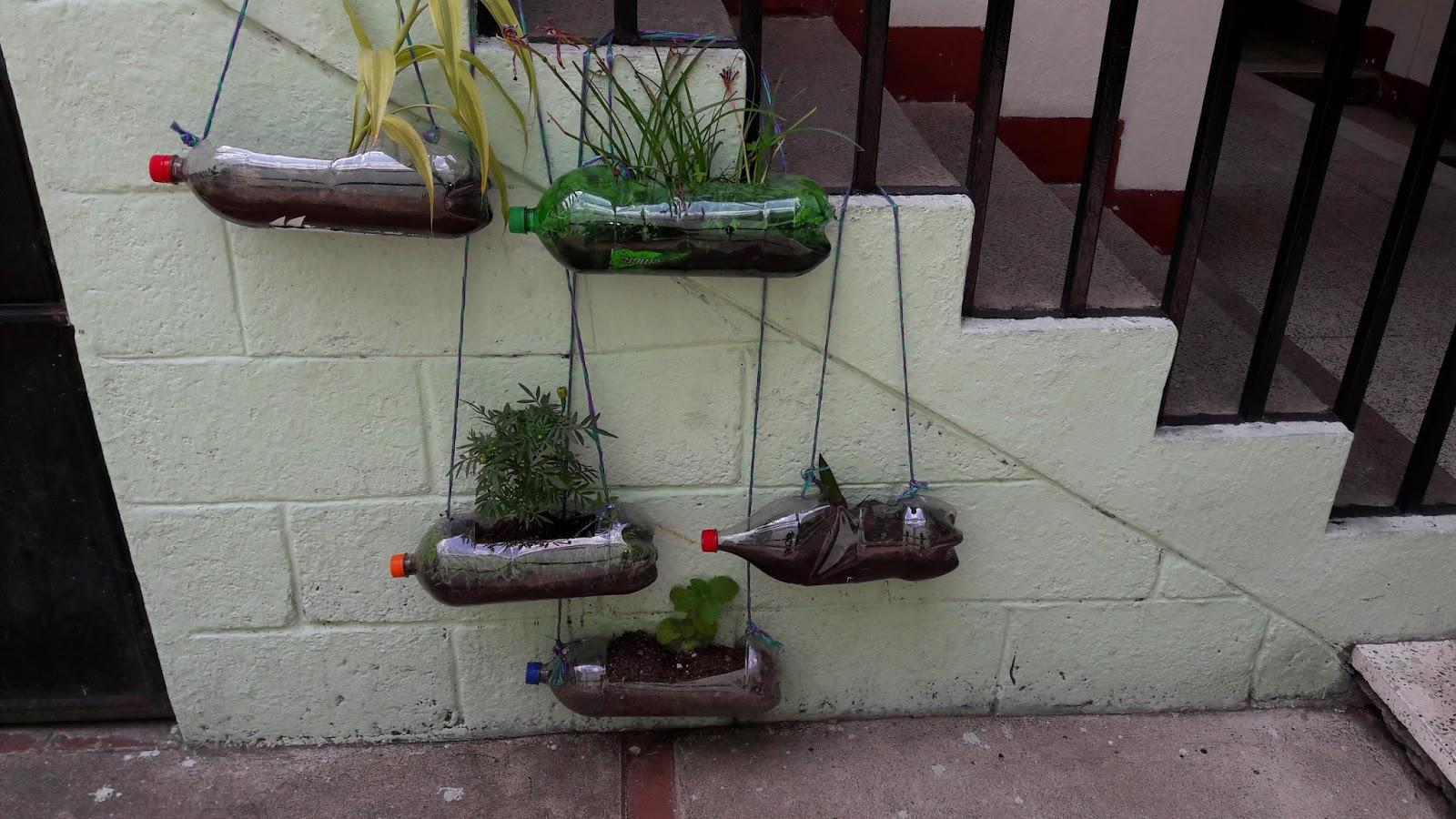 Didactica de botanica proyecto de agrotecnologia jardines for Materiales para jardines verticales