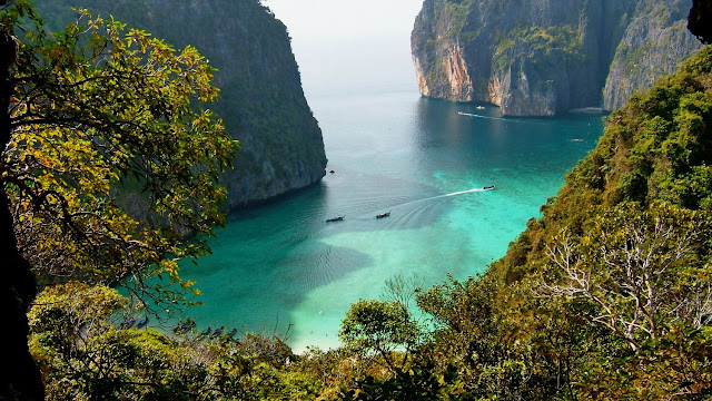 View point at Maya Bay