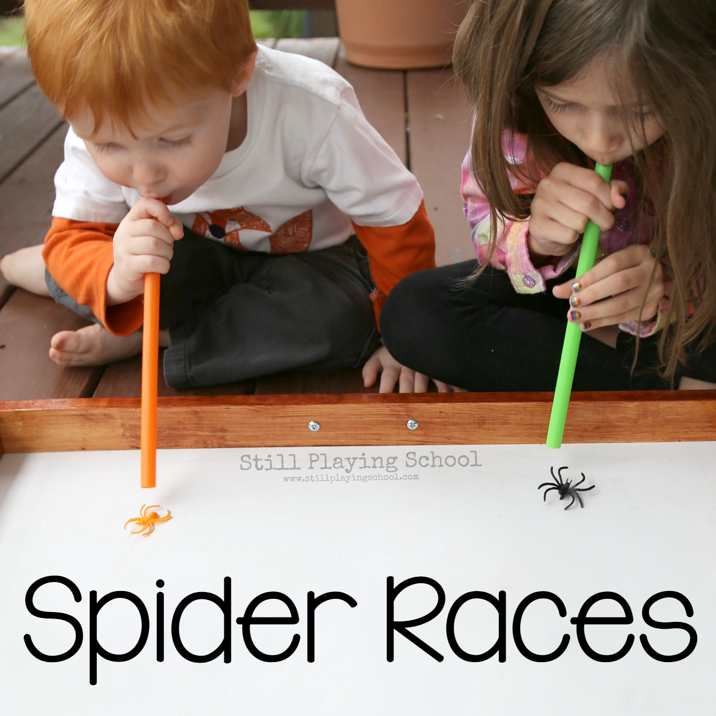 Spider Races for Kids