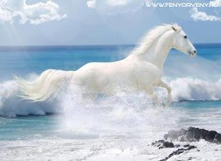 Szimbólumok/Állatszimbólumok: A ló