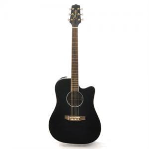 Guitar Takamine EG341SC