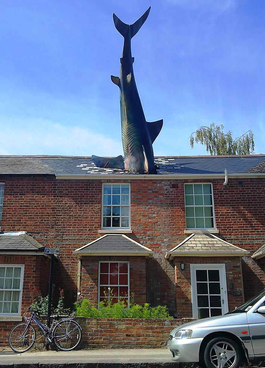 The Shark,Oxford, UK